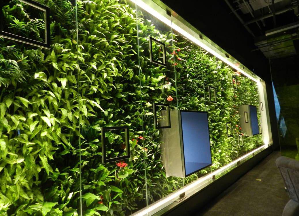 酒店装修植物墙规划