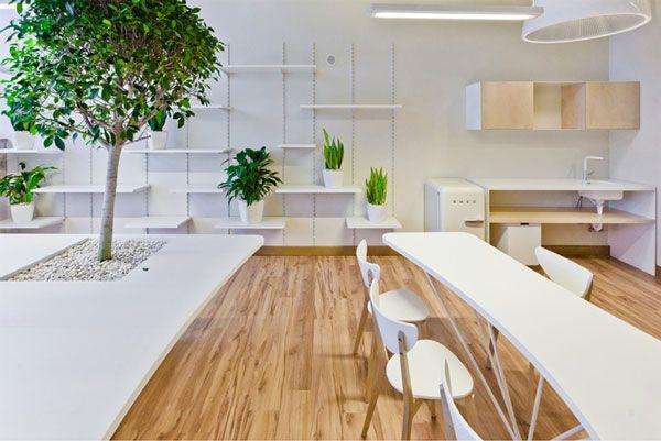 办公室装修木地板铺装效果图