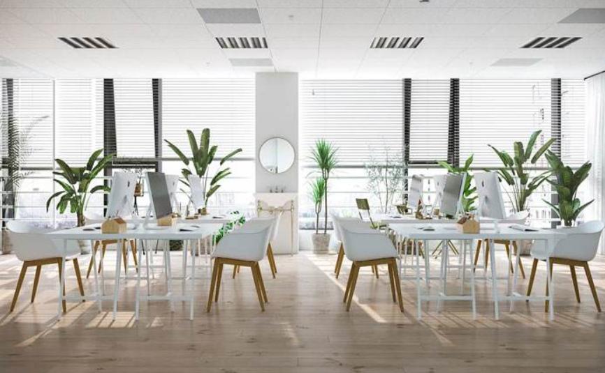 清爽的100平方办公室装修效果图